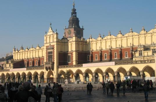 Ukrainian-Polish university exchanges: language specifics