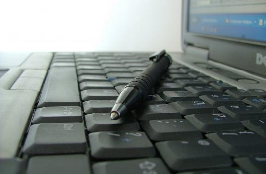 essay hobby surfing internet