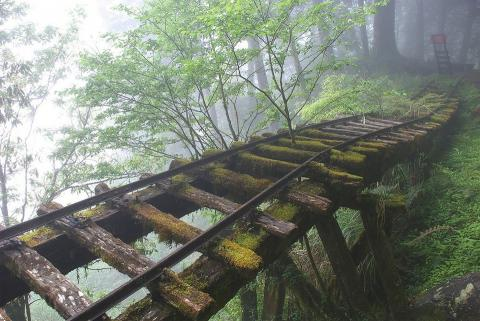 Заброшенные места, которые продолжают манить туристов своей красотой (ФОТО)